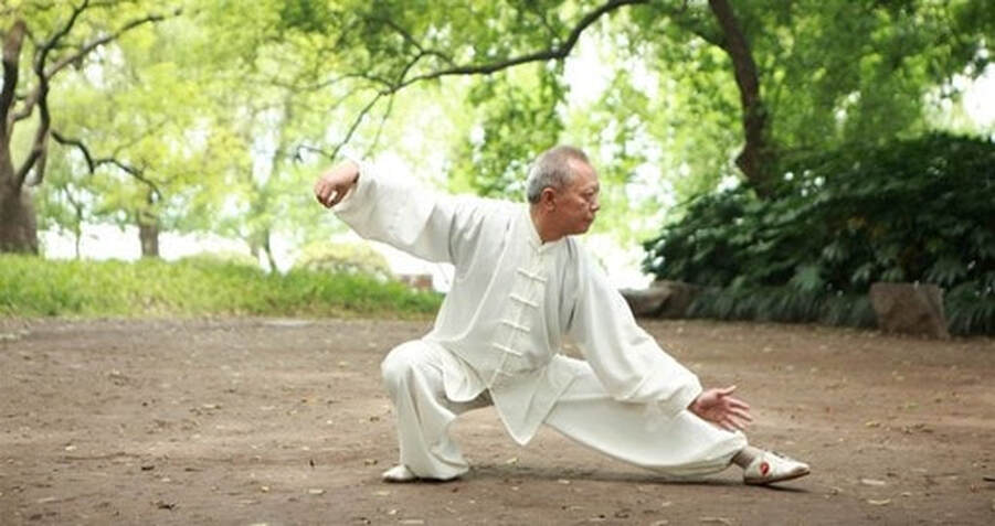 the martial art of tai chi