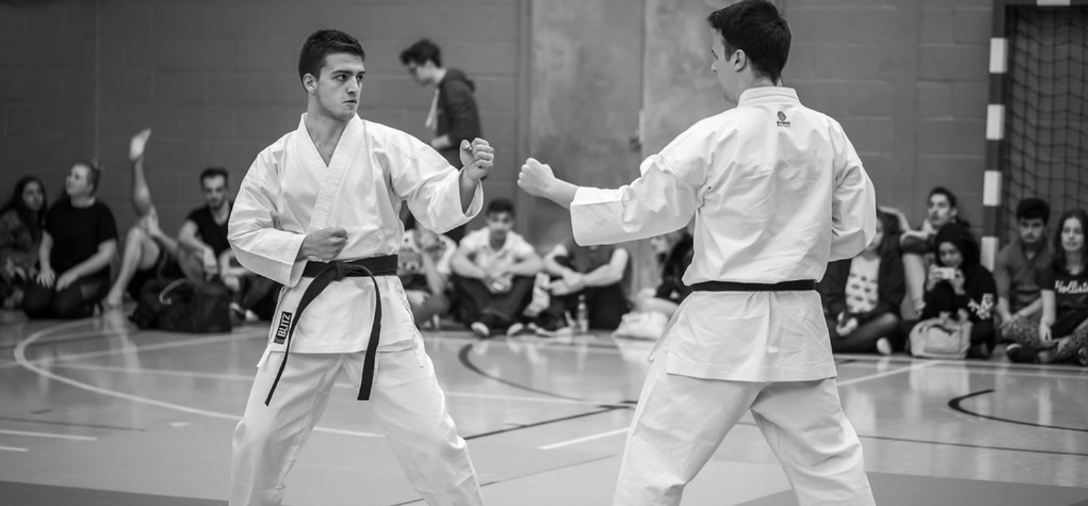 the martial art of karate